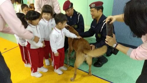 2019-1-7警犬表演